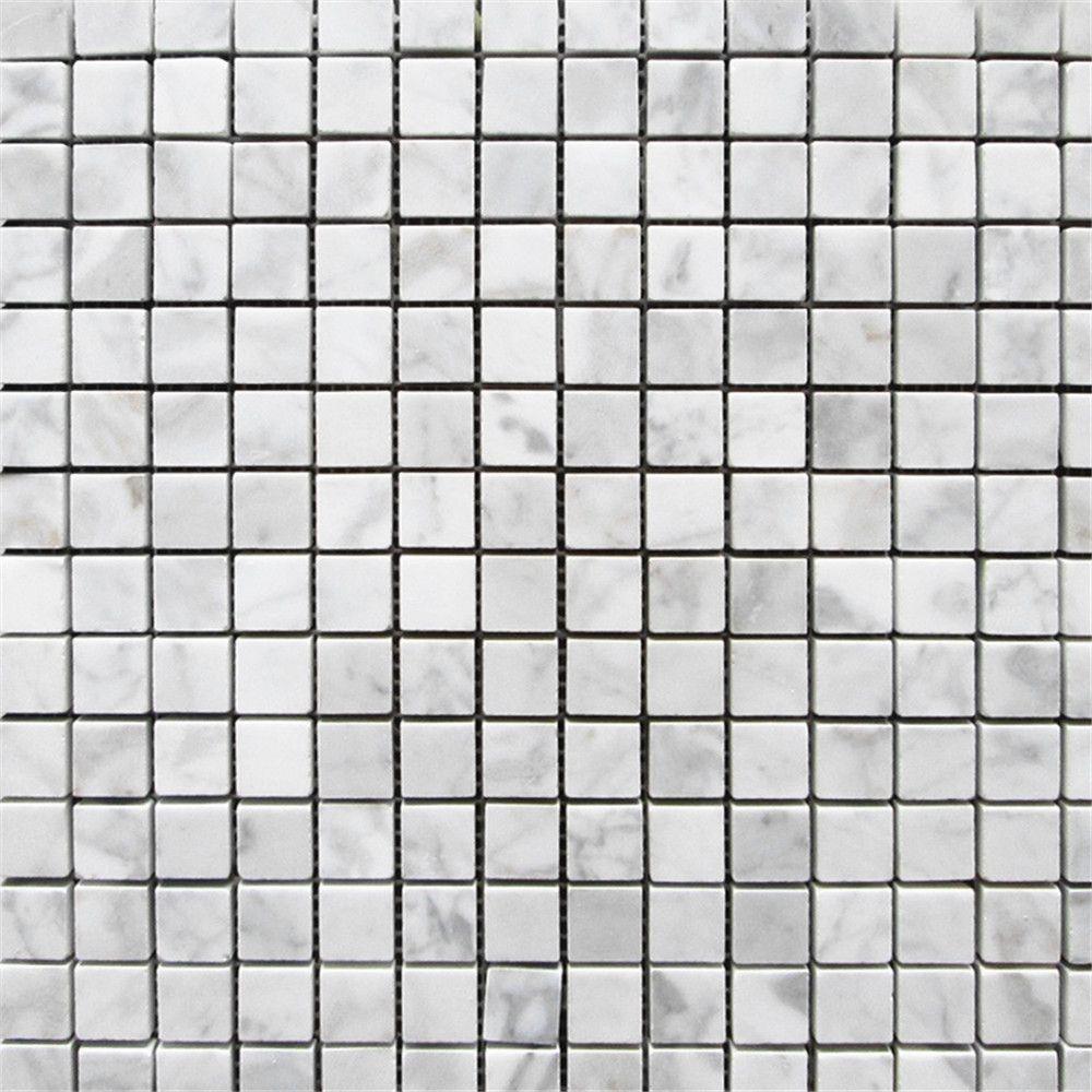 Carrara White Italian Bianco Carrara Marble 3//4 X 2 3//4 Herringbone Mosaic Tile